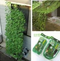 Free shipping,0.8*1.8m.3pcs/lot,Climbing net climbing plants grow net.garden supplies.Fruits and vines Climbing